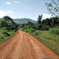 Murram Road