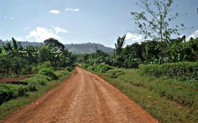 Mbale - Mt.Elgon. Nov 2003 009