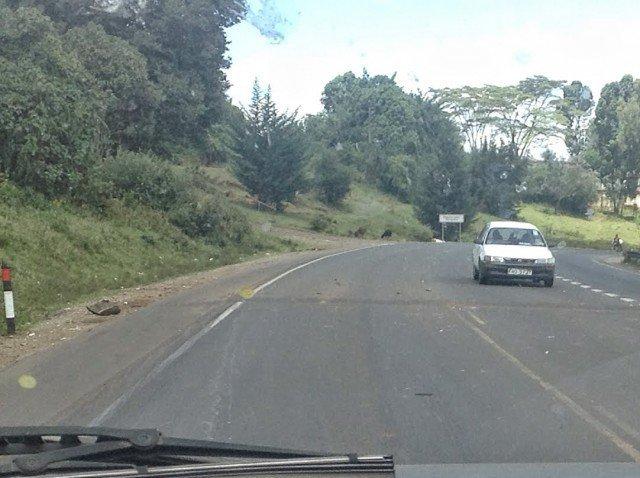 Aggressive Speed Bump - Kenya